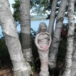 Birch Woman Elder